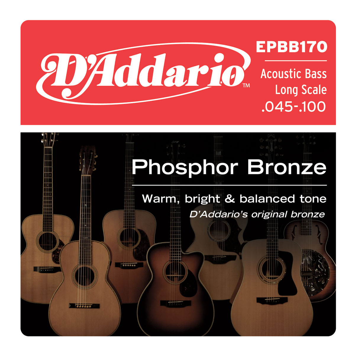 Acoustic Phosphor Bronze 45/100