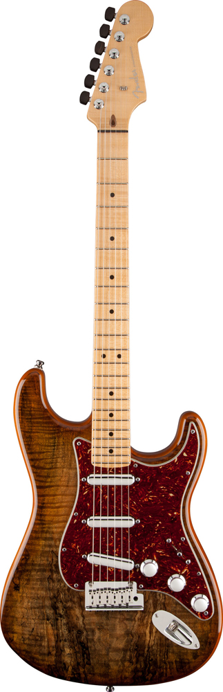 Spalted Maple Top Artisan Stratocaster